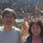 陽だまりの家がある岐阜県白川町はお茶、檜、パイプオルガンの町!人生の楽園