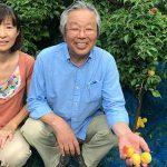 愛媛県「森の国の宿 あざみ野」で夏休み農家民宿体験!人生の楽園