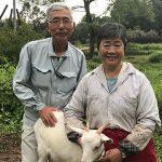宮崎県川南町「里ぐらし」は農家民泊を体験できる。場所や料理は?