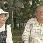 人生の楽園 福田農園が出演 美味しい梨の見分け方は?