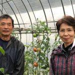 愛媛県遊子川「食堂ゆすかわ」の場所とメニューとトマトオーナー制度とは?人生の楽園
