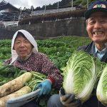 人生の楽園 徳島県『うり坊』のイノシシ肉ジビエ料理と山暮らし体験