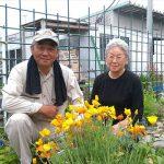宮城県石巻市、花で街を彩り豊かにするボランティア生活!人生の楽園